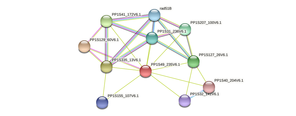 PP1S49_235V6.1 protein (Physcomitrella patens) - STRING interaction network