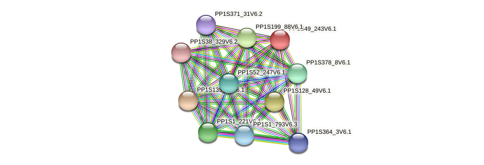 PP1S49_243V6.1 protein (Physcomitrella patens) - STRING interaction network