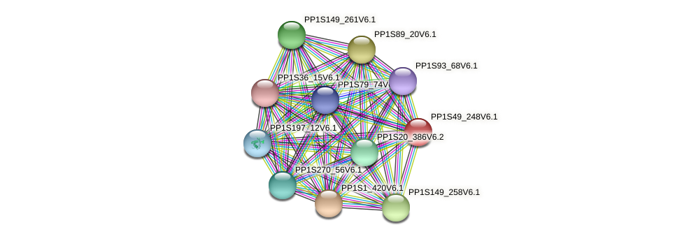 PP1S49_248V6.1 protein (Physcomitrella patens) - STRING interaction network