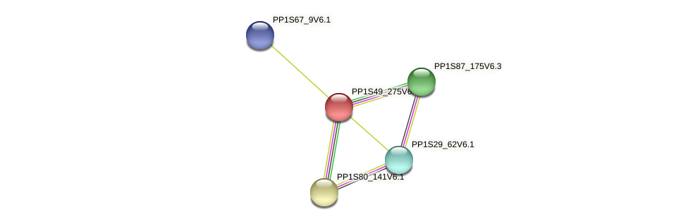 PP1S49_275V6.2 protein (Physcomitrella patens) - STRING interaction network