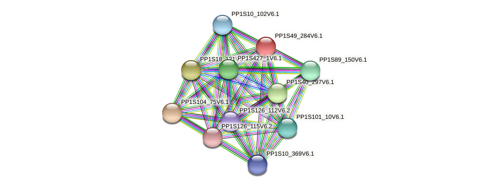 PP1S49_284V6.1 protein (Physcomitrella patens) - STRING interaction network