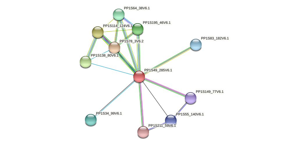 PP1S49_285V6.1 protein (Physcomitrella patens) - STRING interaction network