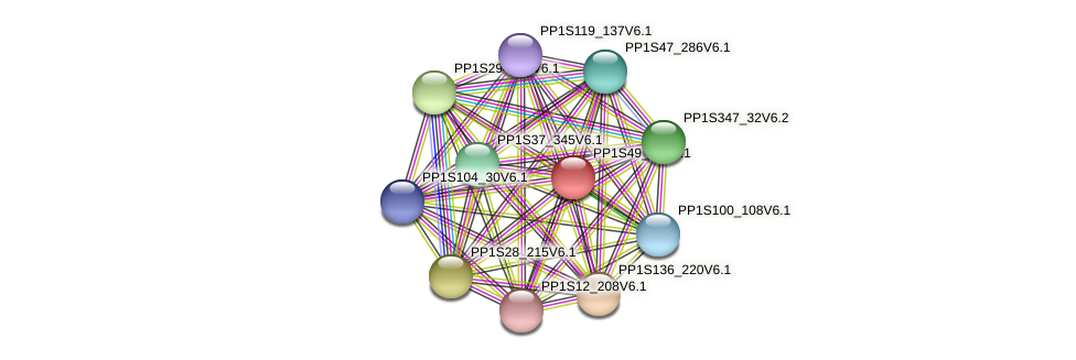 PP1S49_47V6.1 protein (Physcomitrella patens) - STRING interaction network