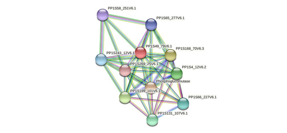 PP1S49_79V6.1 protein (Physcomitrella patens) - STRING interaction network