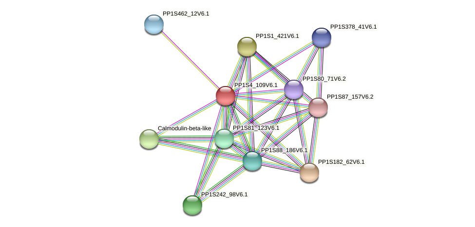 PP1S4_109V6.1 protein (Physcomitrella patens) - STRING interaction network