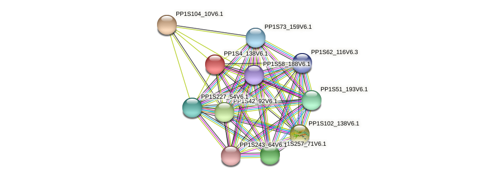PP1S4_138V6.1 protein (Physcomitrella patens) - STRING interaction network