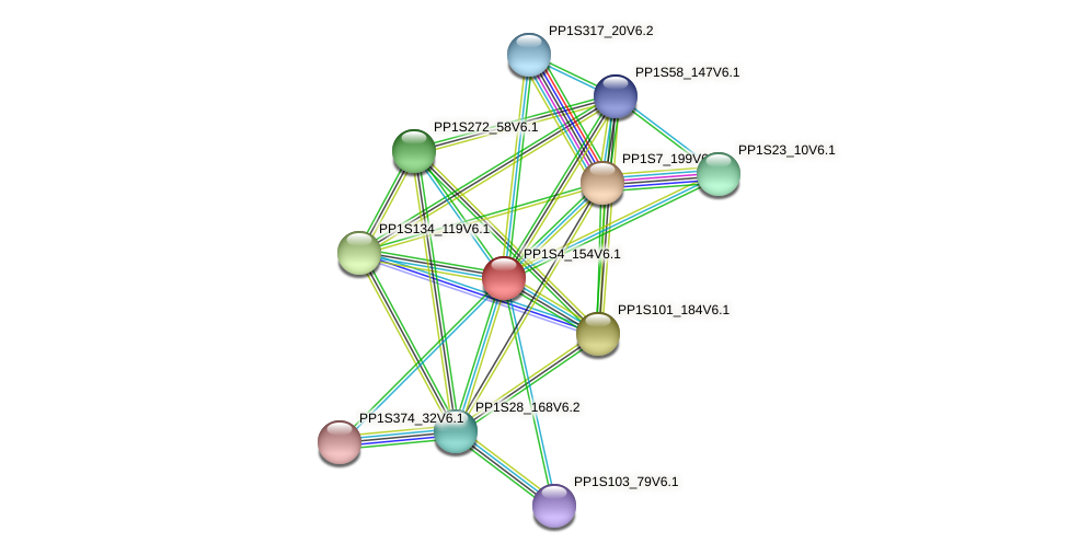 PP1S4_154V6.1 protein (Physcomitrella patens) - STRING interaction network