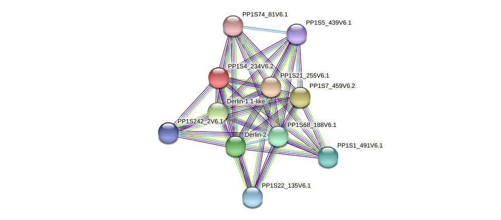 PP1S4_234V6.2 protein (Physcomitrella patens) - STRING interaction network