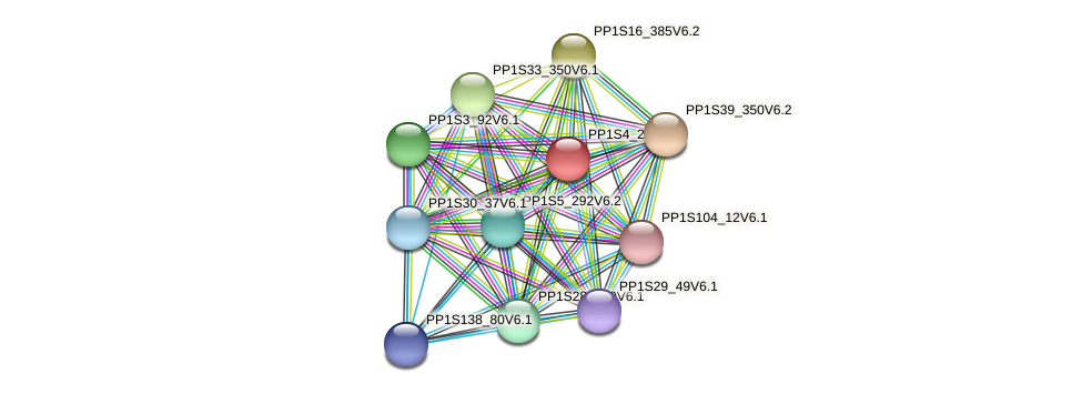 PP1S4_24V6.1 protein (Physcomitrella patens) - STRING interaction network