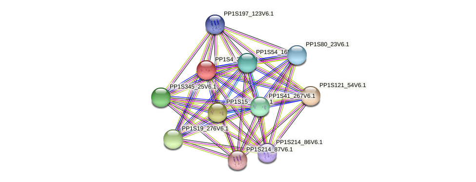 PP1S4_321V6.1 protein (Physcomitrella patens) - STRING interaction network