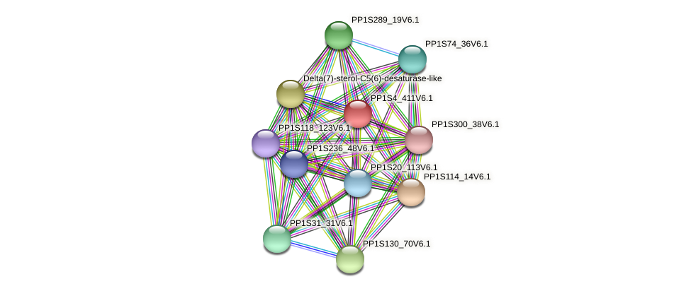 PP1S4_411V6.1 protein (Physcomitrella patens) - STRING interaction network