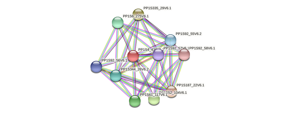 PP1S4_436V6.2 protein (Physcomitrella patens) - STRING interaction network