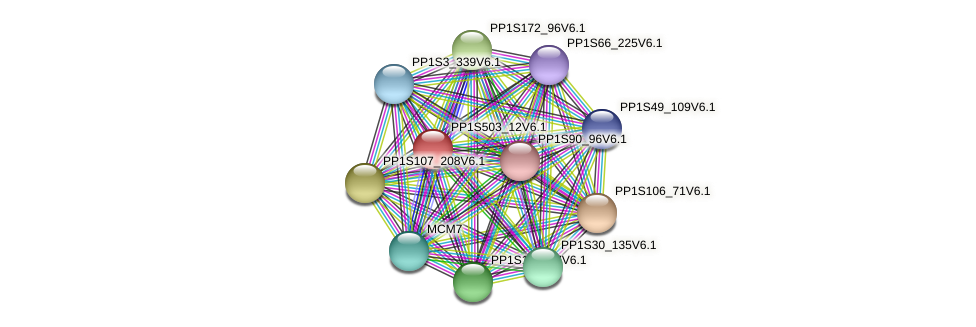 PP1S503_12V6.1 protein (Physcomitrella patens) - STRING interaction network