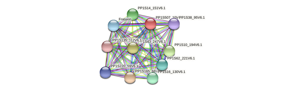 PP1S507_10V6.1 protein (Physcomitrella patens) - STRING interaction network