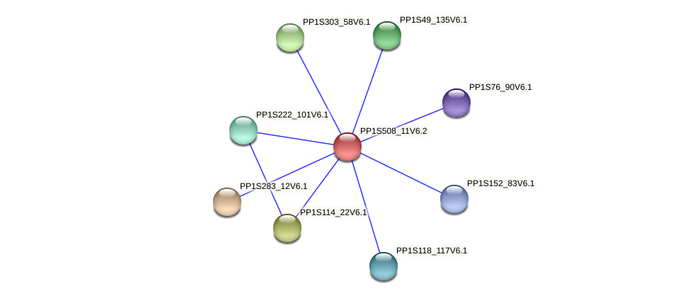 PP1S508_11V6.2 protein (Physcomitrella patens) - STRING interaction network