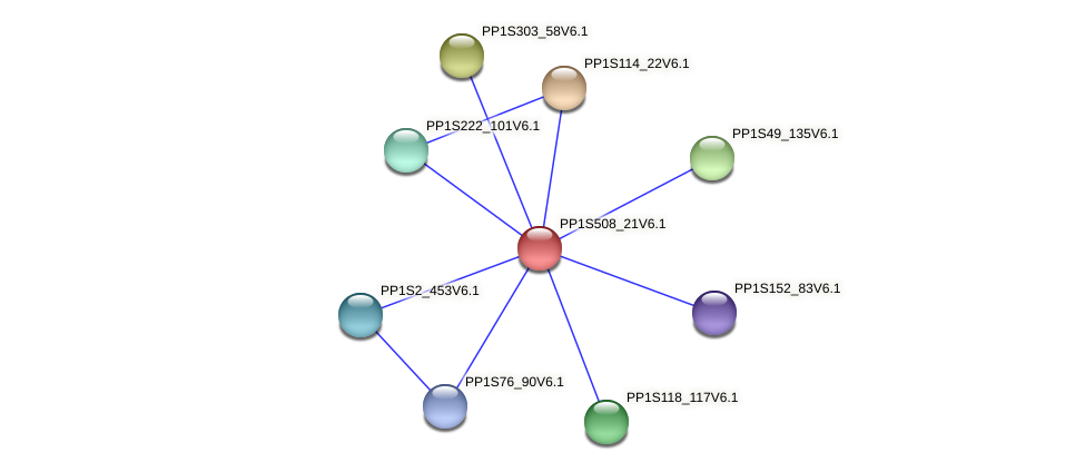 PP1S508_21V6.1 protein (Physcomitrella patens) - STRING interaction network