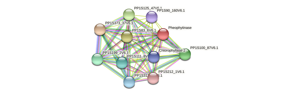 PP1S50_49V6.1 protein (Physcomitrella patens) - STRING interaction network