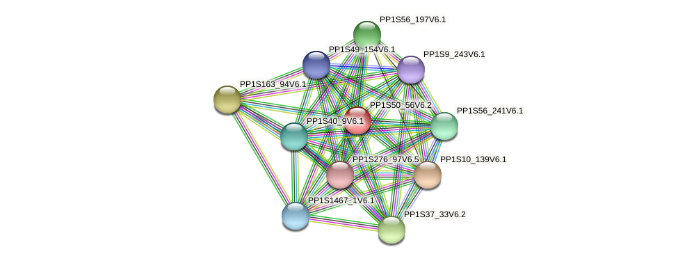 PP1S50_56V6.1 protein (Physcomitrella patens) - STRING interaction network