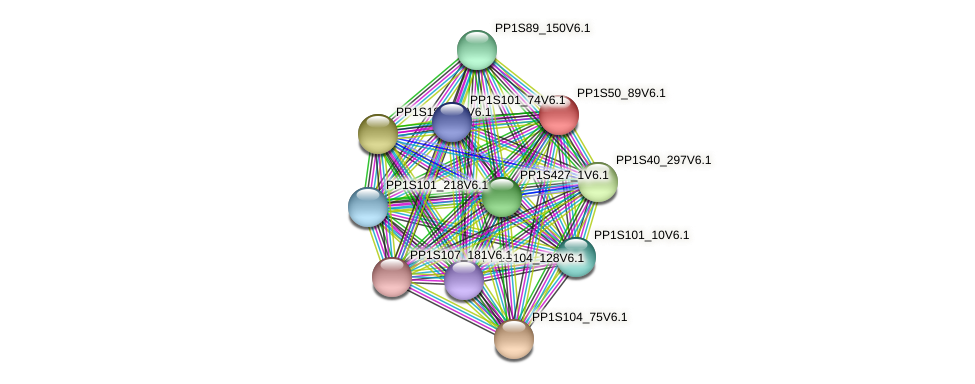 PP1S50_89V6.1 protein (Physcomitrella patens) - STRING interaction network