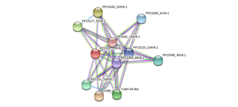 PP1S51_109V6.1 protein (Physcomitrella patens) - STRING interaction network