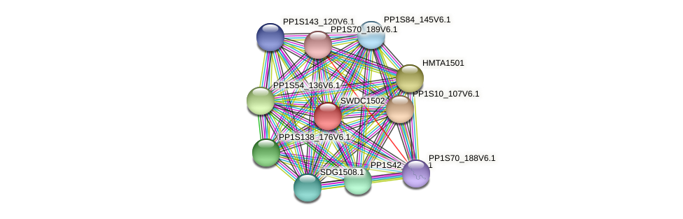 SWDC1502 protein (Physcomitrella patens) - STRING interaction network