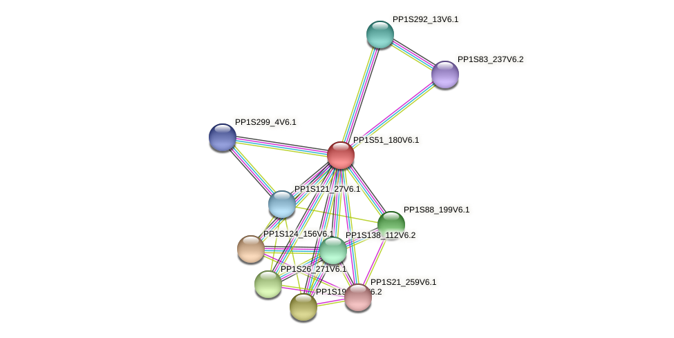 PP1S51_180V6.1 protein (Physcomitrella patens) - STRING interaction network