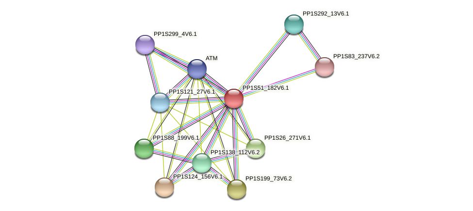 PP1S51_182V6.1 protein (Physcomitrella patens) - STRING interaction network