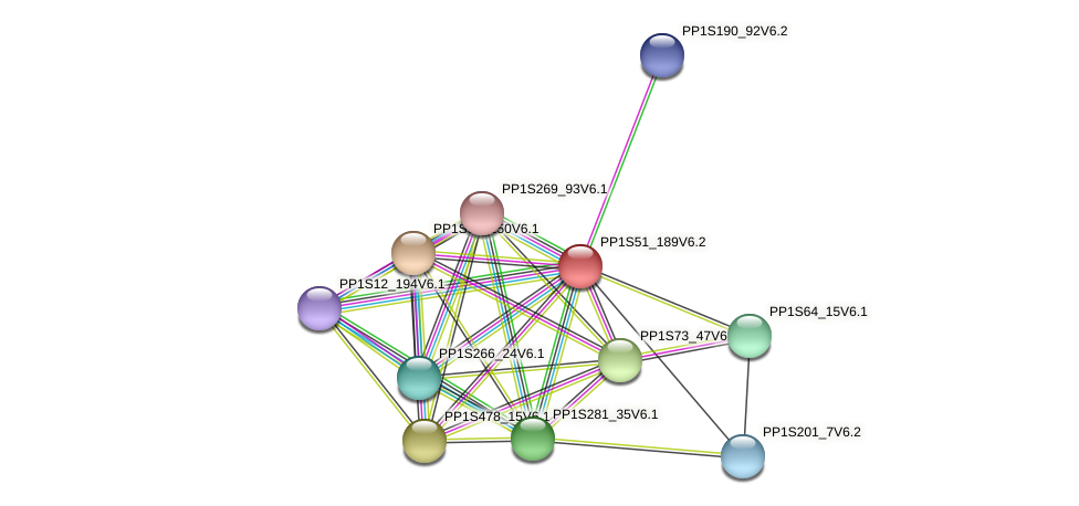 PP1S51_189V6.1 protein (Physcomitrella patens) - STRING interaction network