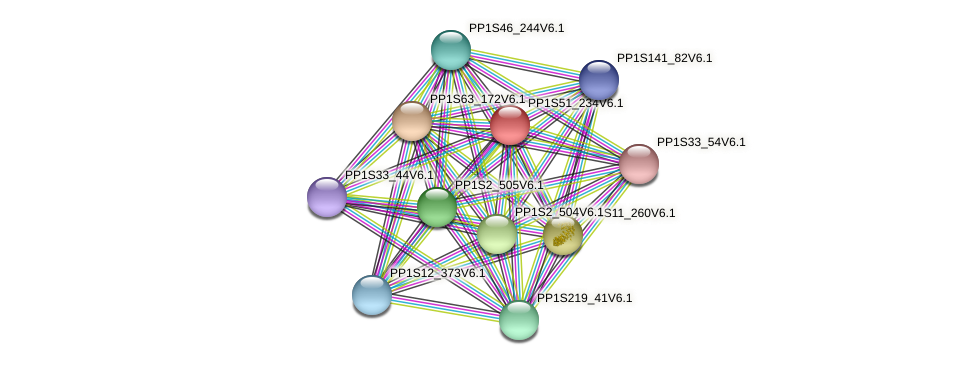 PP1S51_234V6.1 protein (Physcomitrella patens) - STRING interaction network