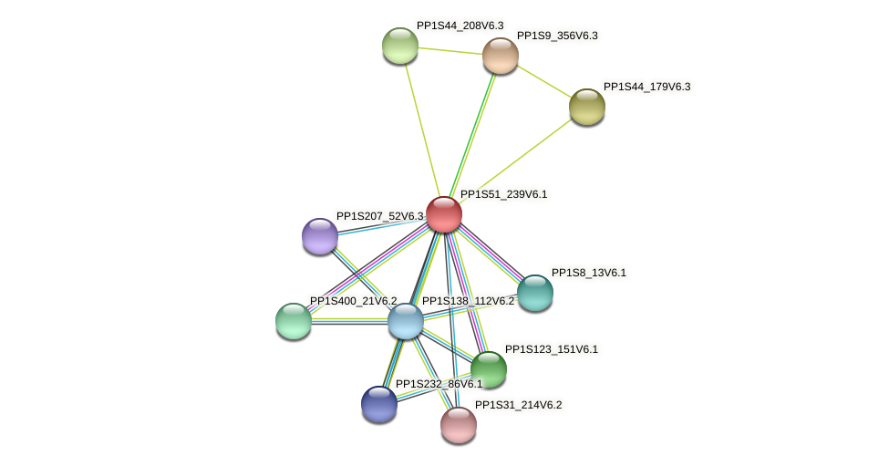 PP1S51_239V6.1 protein (Physcomitrella patens) - STRING interaction network