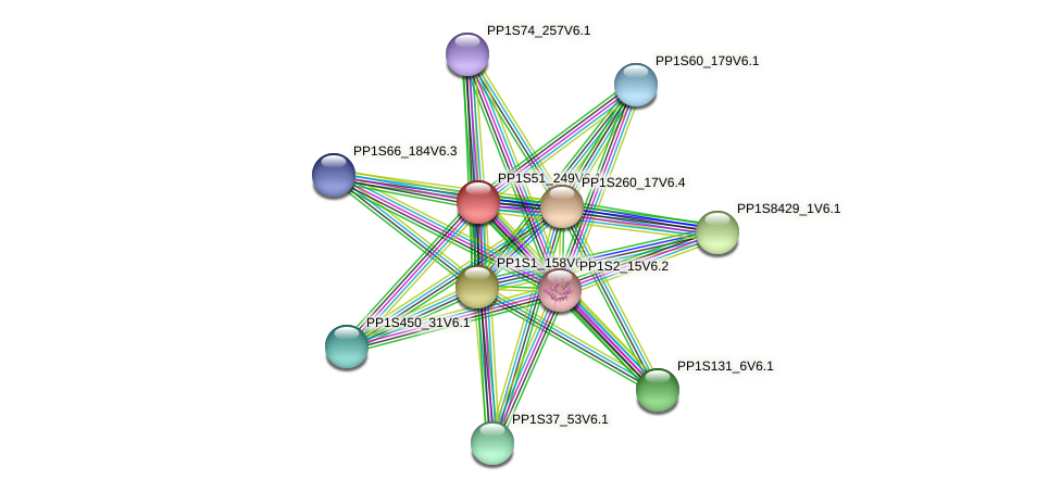 PP1S51_249V6.1 protein (Physcomitrella patens) - STRING interaction network