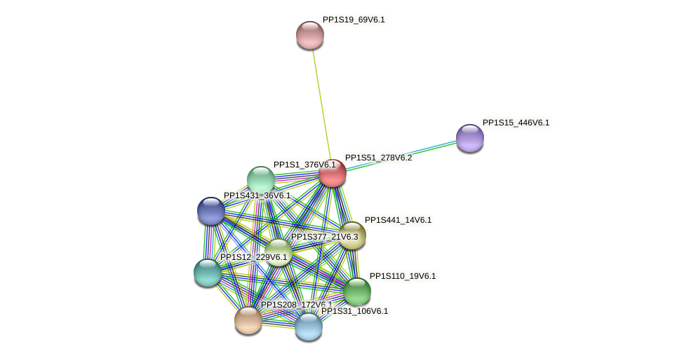 PP1S51_278V6.2 protein (Physcomitrella patens) - STRING interaction network