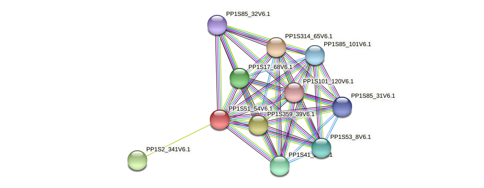 PP1S51_54V6.1 protein (Physcomitrella patens) - STRING interaction network