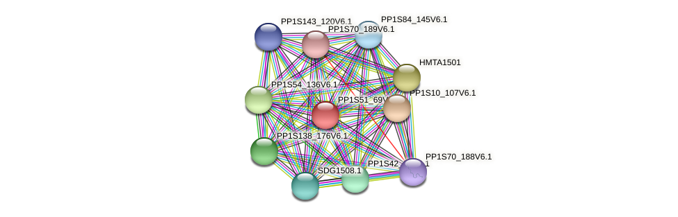 PP1S51_69V6.1 protein (Physcomitrella patens) - STRING interaction network
