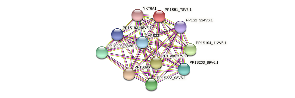 PP1S51_78V6.1 protein (Physcomitrella patens) - STRING interaction network