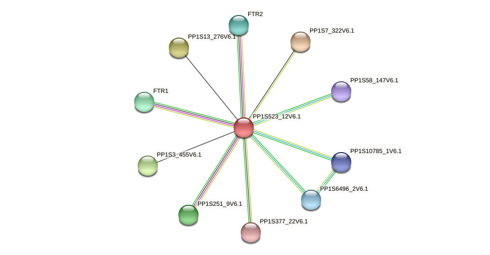PP1S523_12V6.1 protein (Physcomitrella patens) - STRING interaction network