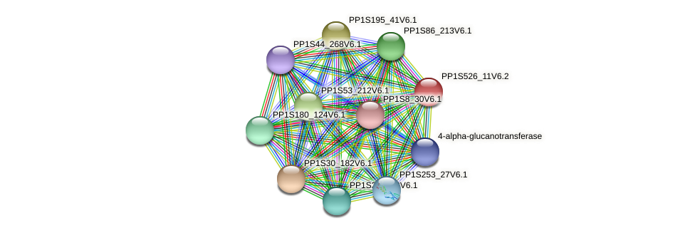 PP1S526_11V6.2 protein (Physcomitrella patens) - STRING interaction network