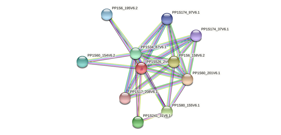 PP1S526_2V6.1 protein (Physcomitrella patens) - STRING interaction network