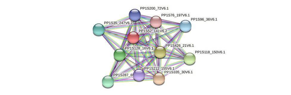 PP1S52_141V6.1 protein (Physcomitrella patens) - STRING interaction network