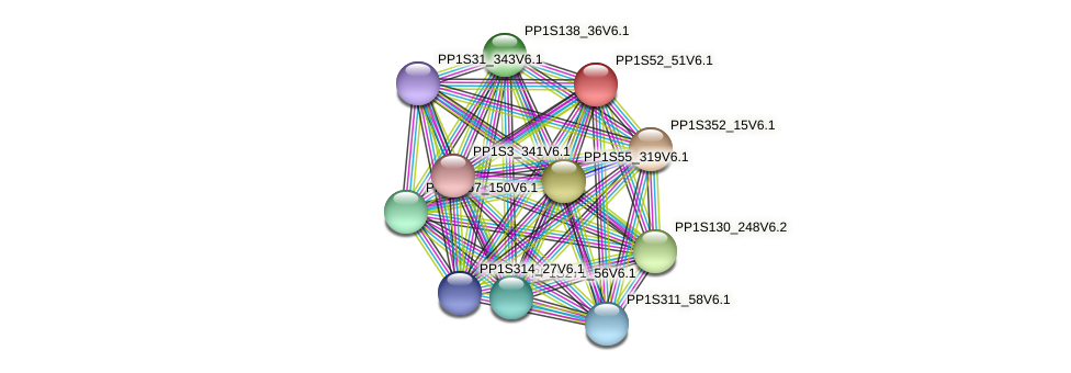 PP1S52_51V6.1 protein (Physcomitrella patens) - STRING interaction network