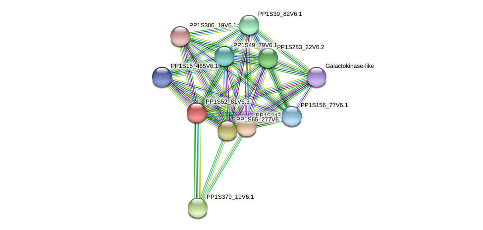 PP1S52_81V6.1 protein (Physcomitrella patens) - STRING interaction network