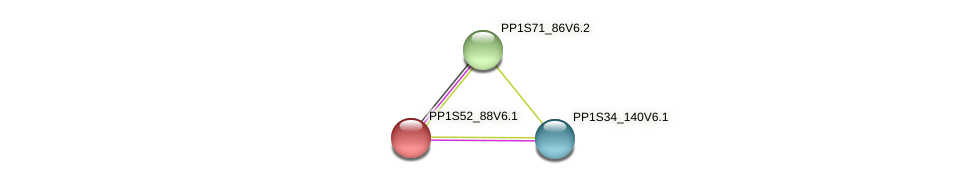 PP1S52_88V6.1 protein (Physcomitrella patens) - STRING interaction network