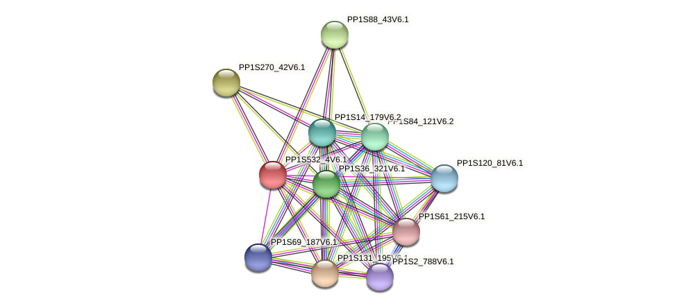 PP1S532_4V6.1 protein (Physcomitrella patens) - STRING interaction network