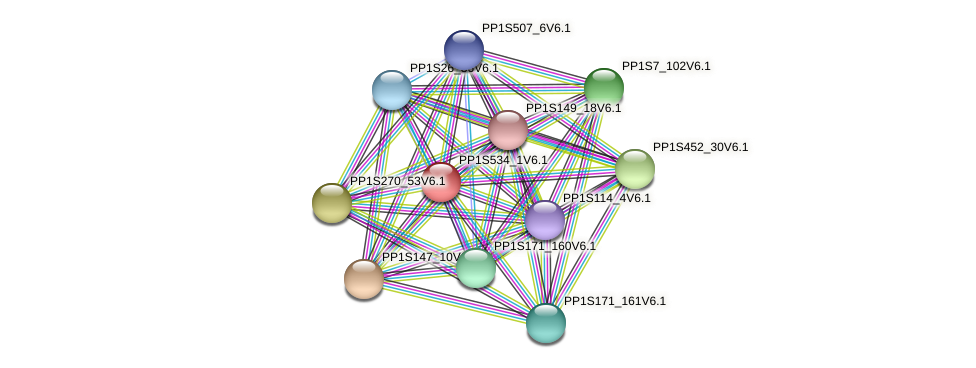 PP1S534_1V6.1 protein (Physcomitrella patens) - STRING interaction network