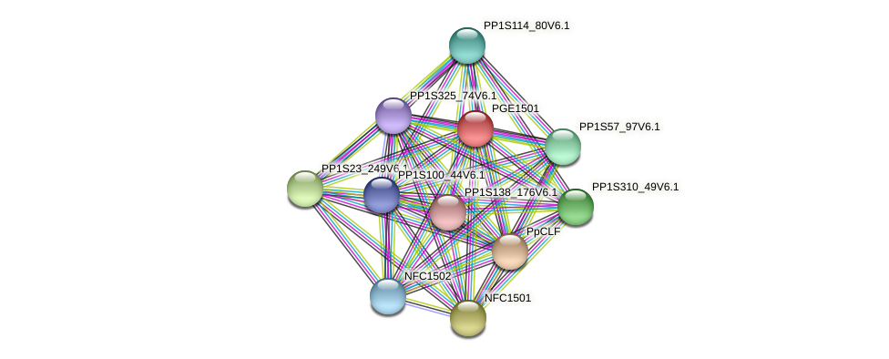 PGE1501 protein (Physcomitrella patens) - STRING interaction network