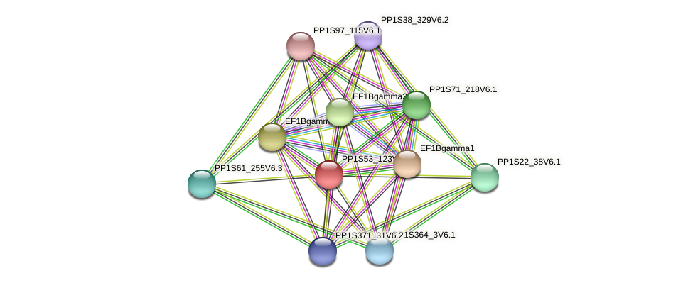 PP1S53_123V6.1 protein (Physcomitrella patens) - STRING interaction network