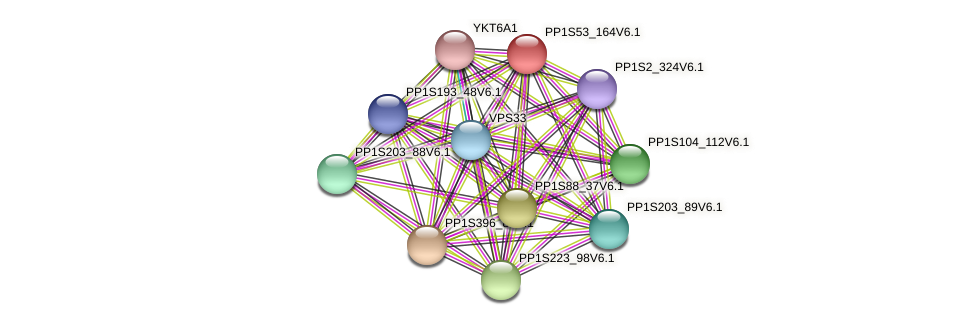 PP1S53_164V6.1 protein (Physcomitrella patens) - STRING interaction network