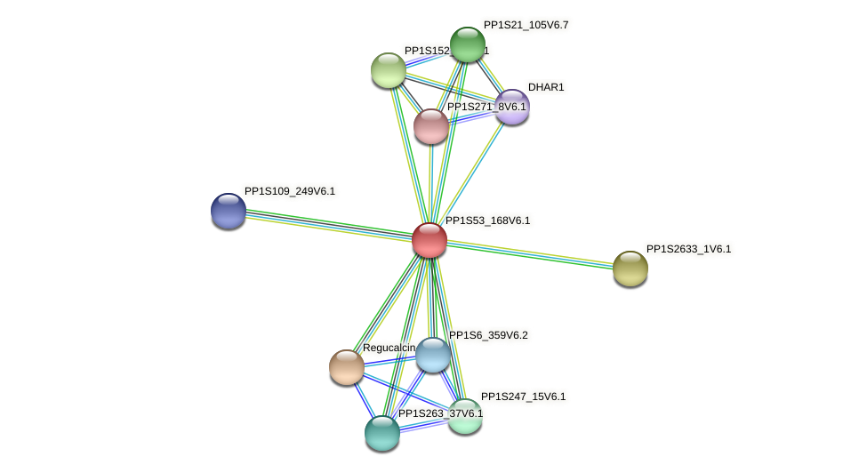 PP1S53_168V6.1 protein (Physcomitrella patens) - STRING interaction network