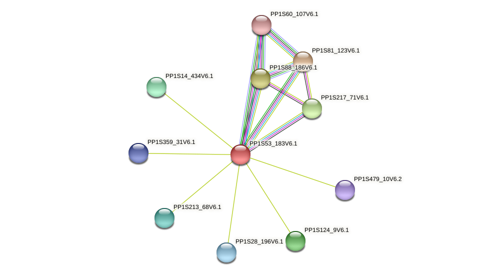 PP1S53_183V6.1 protein (Physcomitrella patens) - STRING interaction network