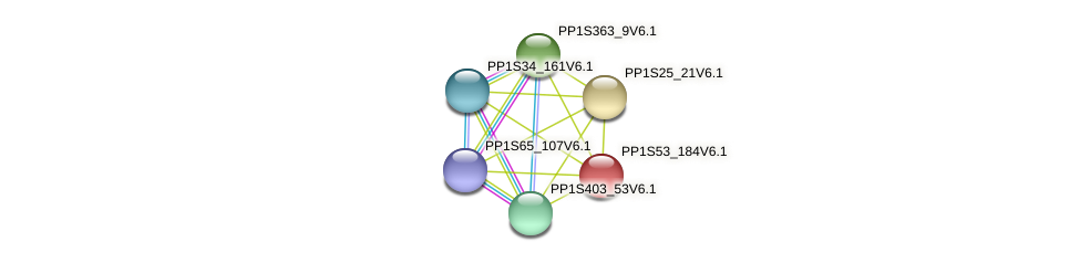 PP1S53_184V6.1 protein (Physcomitrella patens) - STRING interaction network